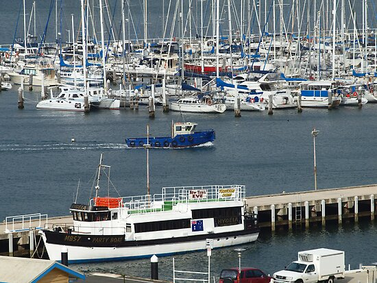 Busy Marina by Fiona Allan Photography