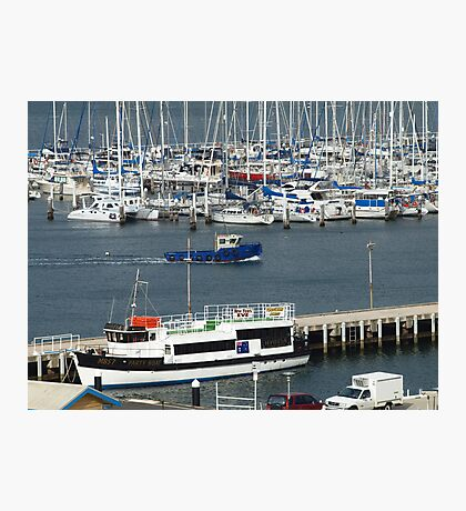 Busy Marina Photographic Print