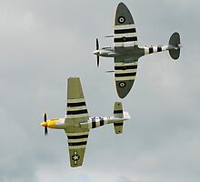 Spitfire and Mustang fighters by David Fowler