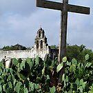 Mission San Juan by © Loree McComb