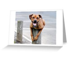 Another trick up his sleeve? Greeting Card