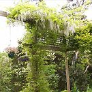 Hanging Gardens of Rosevears by DEB CAMERON