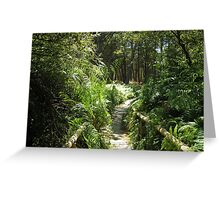 Down the walking track Greeting Card