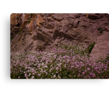 Flowers and Rock Canvas Print