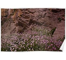 Flowers and Rock Poster