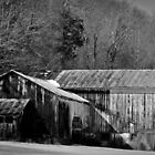 Old Barn by Scott Brookshire