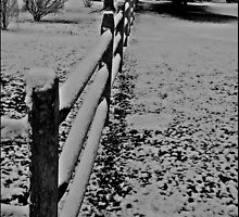 Old Fence by Scott Brookshire