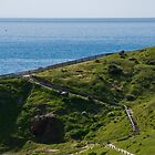hallett cove by paul erwin