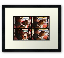 His Jokes Have Gone To The Dogs Framed Print