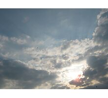 Flying home to Roost Photographic Print