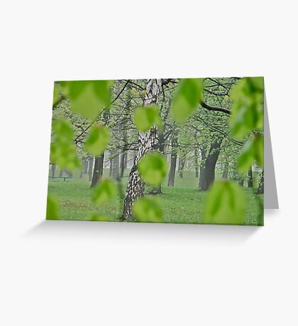 Views: 2369 . My Green Day . by Brown Sugar . Featured * . This image Has Been S O L D .  .WoW !!! .   How wonderful !!! thank you !!! Happy Easter Friends !!! Greeting Card