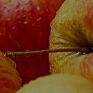 Wet Apple .  Abstract . by  Brown Sugar . Favorites: 2 Views: 173 . Dziękuję ! Thanks ! Toda raba ! Danke ! by © Andrzej Goszcz,M.D. Ph.D