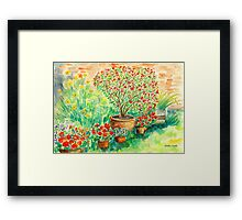 My Flourishing Oleander in Pink Framed Print