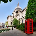 The red telephone box by Adri  Padmos