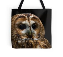 Troy the Tawny Owl Tote Bag