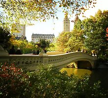 Bow Bridge Central Park in Autumn by Vivienne Gucwa