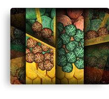 Corn Row Canvas Print