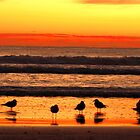 Sharing the Sunrise by Janie. D