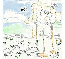 Sheep's Cheese and Honey - Yummy ;o) Photographic Print