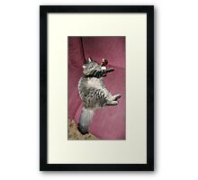 Life Is Rough! Framed Print