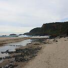 Bushranger Bay by Glen Sheppard