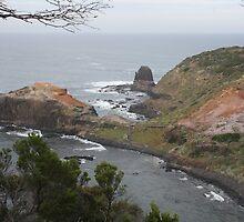 Cape Schank overview by Glen Sheppard