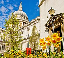 Spring At St Paul`s - London by Colin  Williams Photography