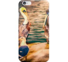 The Pelican Four Stooges iPhone Case/Skin