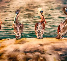 The Pelican Four Stooges by damhotpepper