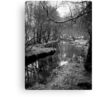 River Pathway Canvas Print