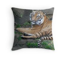 Restful Day Throw Pillow