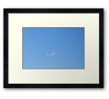 The Flight of Freedom Framed Print