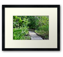 Pathway to Happiness Framed Print