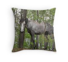 Warlock's Shimmering Steel III Throw Pillow