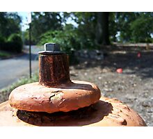 Fire Hydrant Photographic Print