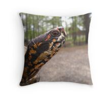 Three-Toed Ornate Box Turtle II Throw Pillow