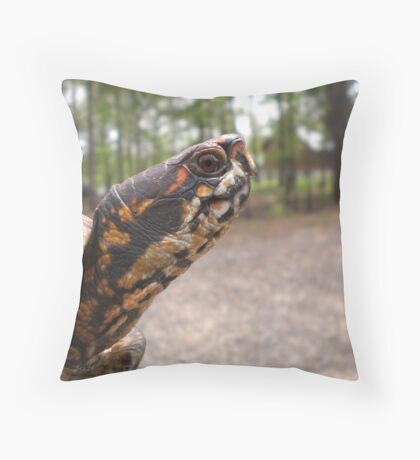 Three-Toed Ornate Box Turtle II Throw Pillow