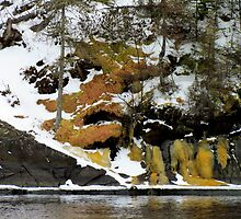 Fire Moss, Snow,Melting Ice and Impending Spring by loralea