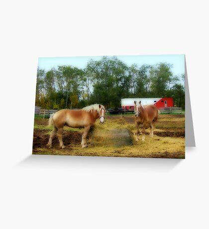 Farm Life Greeting Card
