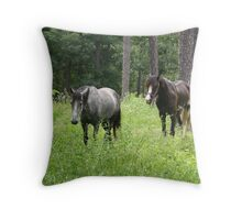 Warlock's Shimmering Steel VIII Throw Pillow