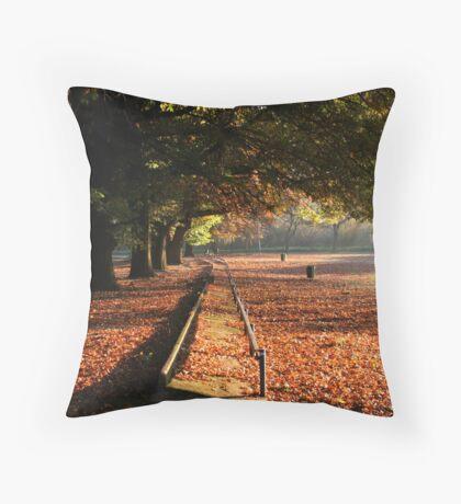 Early autumn sunrise Throw Pillow