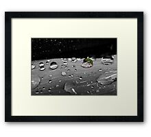 A Touch of Raindrops Framed Print