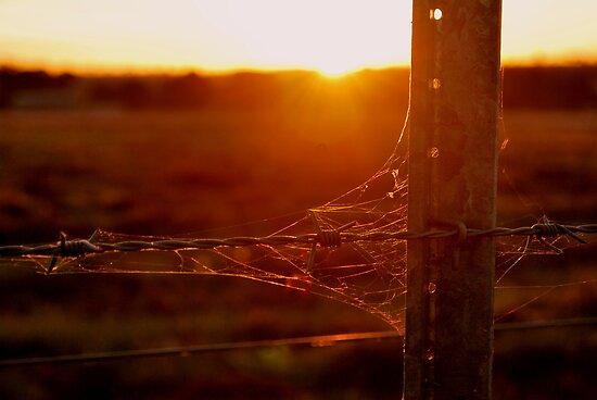 Rustic Sunset by Lozzar Landscape