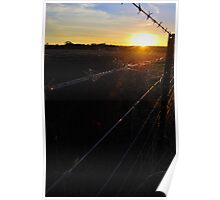 Along the Country Fence Poster