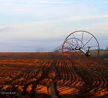 Wheel Line Irrigation System | Jamesport, New York by © Sophie W. Smith