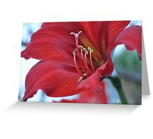 Bright and Beautiful Bloom Greeting Card