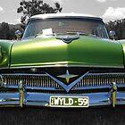 WYLD 59 by MissyD