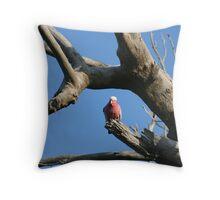 Galah in Tree Throw Pillow