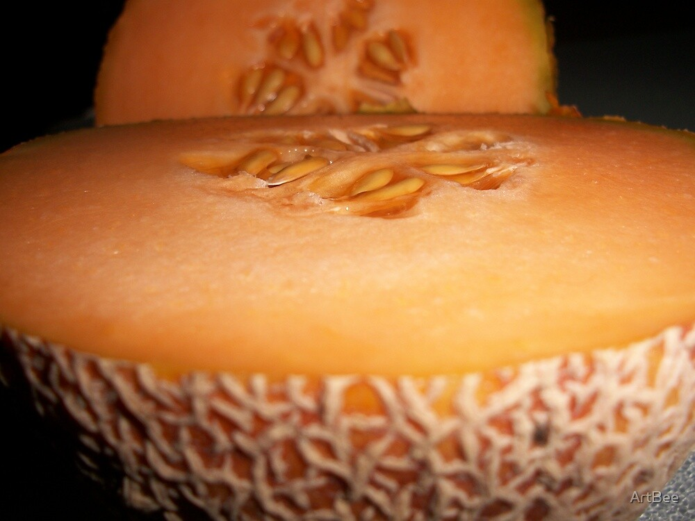 Cool Cantaloupe by ArtBee