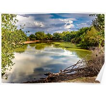 Colorful Pond Poster
